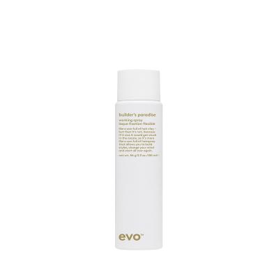Спрей-Лак Сильной Фиксации [мечта строителя] Evo Builder's Paradise Working Spray 100 мл