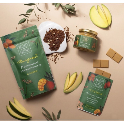 Гречишный Шоколад с Манго Nature's Own Factory 20 г